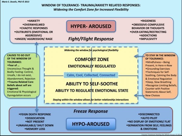 the window of tolerance - anxiety and trauma responses explained